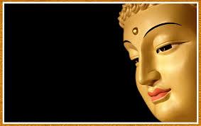 Curso Práctico de Budismo y Meditación Vipassana -Junio 2015 -Las Condes.